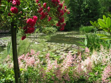 Jardin de Claude Monet - Giverny