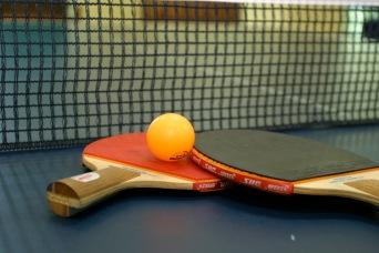 Espace Ping-Pong - Le Clos de la Risle